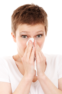 Allergy Indoor Mold Air Quality Services